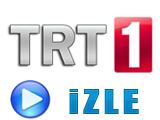 İspanya – İtalya Maçını Canlı İzle TRT 1 HD 10 Haziran 2012