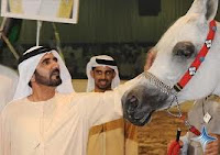 Kuda Arab yang Unggul adalah Kuda yang Taat