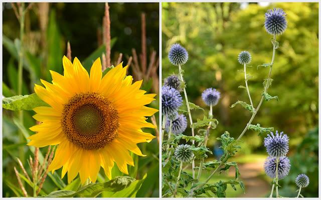 le voyage à Nantes - le jardin des plantes