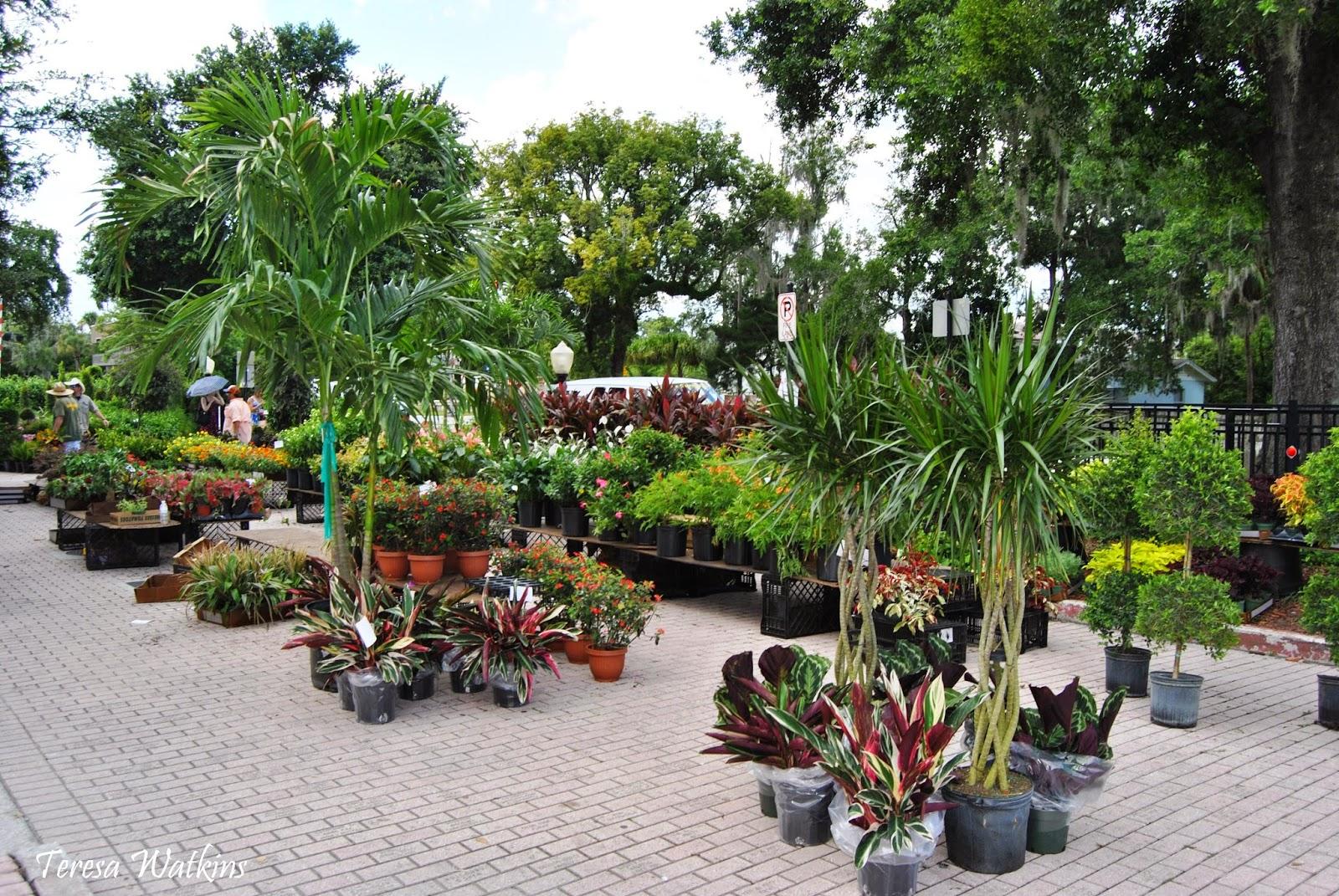 Earth Shattering Gardening Winter Park Horticulture