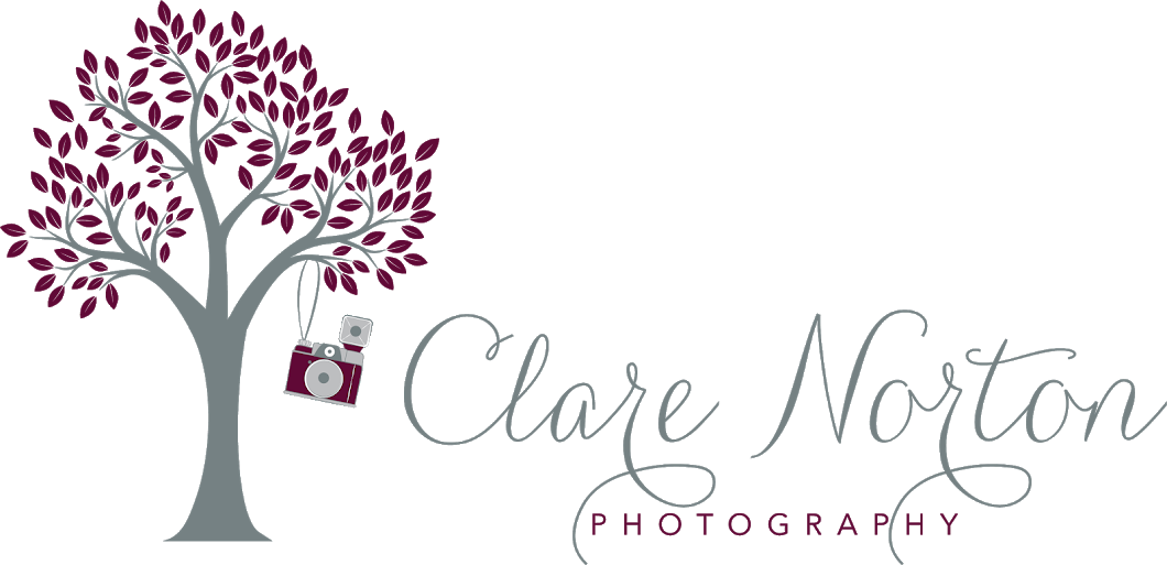 Clare Norton Photography ~ Photographing Folks in Love Since 2006