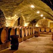 В Израиле археологи нашли старейший в мире винный погреб