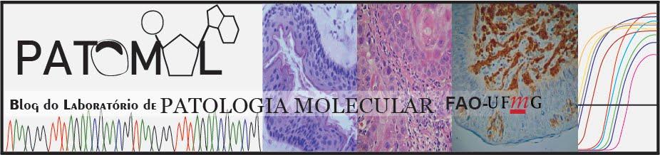 Laboratório de Patologia Molecular Faculdade de Odontologia FO UFMG