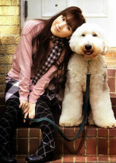 Gambar Anjing dan Yui Horie