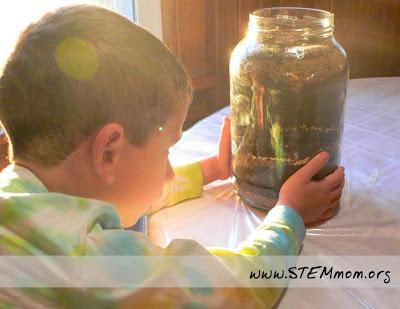 Boy observing Worm Jar: STEMmom.org