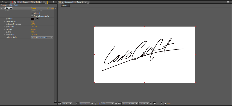 adobe pdf lines with signature