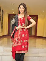 Sayesha at Akhil movie pre release interview-cover-photo