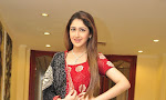 Sayesha at Akhil movie pre release interview-thumbnail