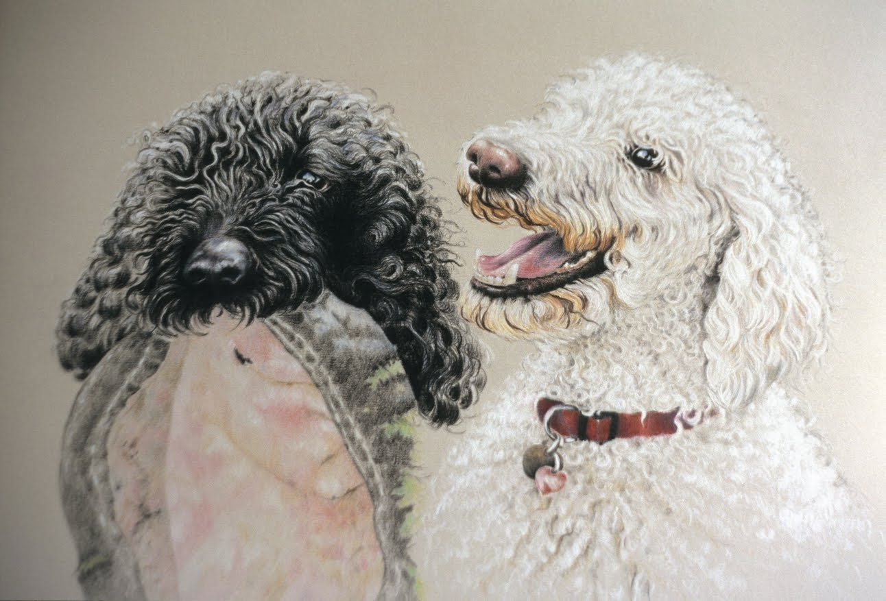 Frisbee Dogs - Colored Pencil