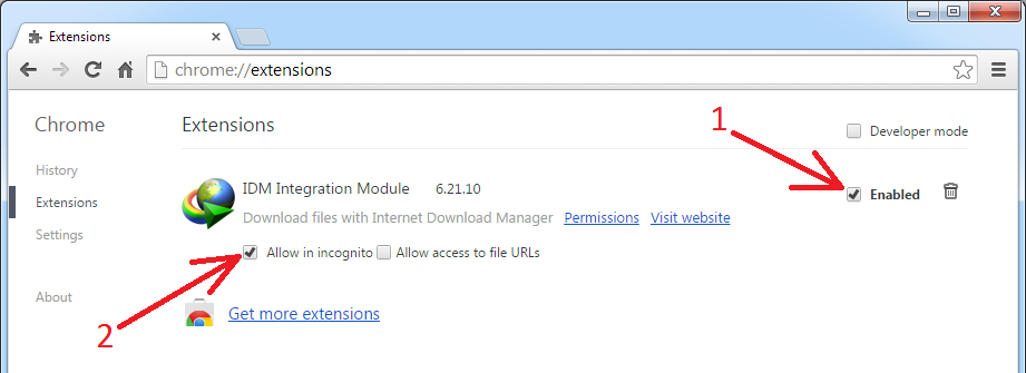 download with idm chrome