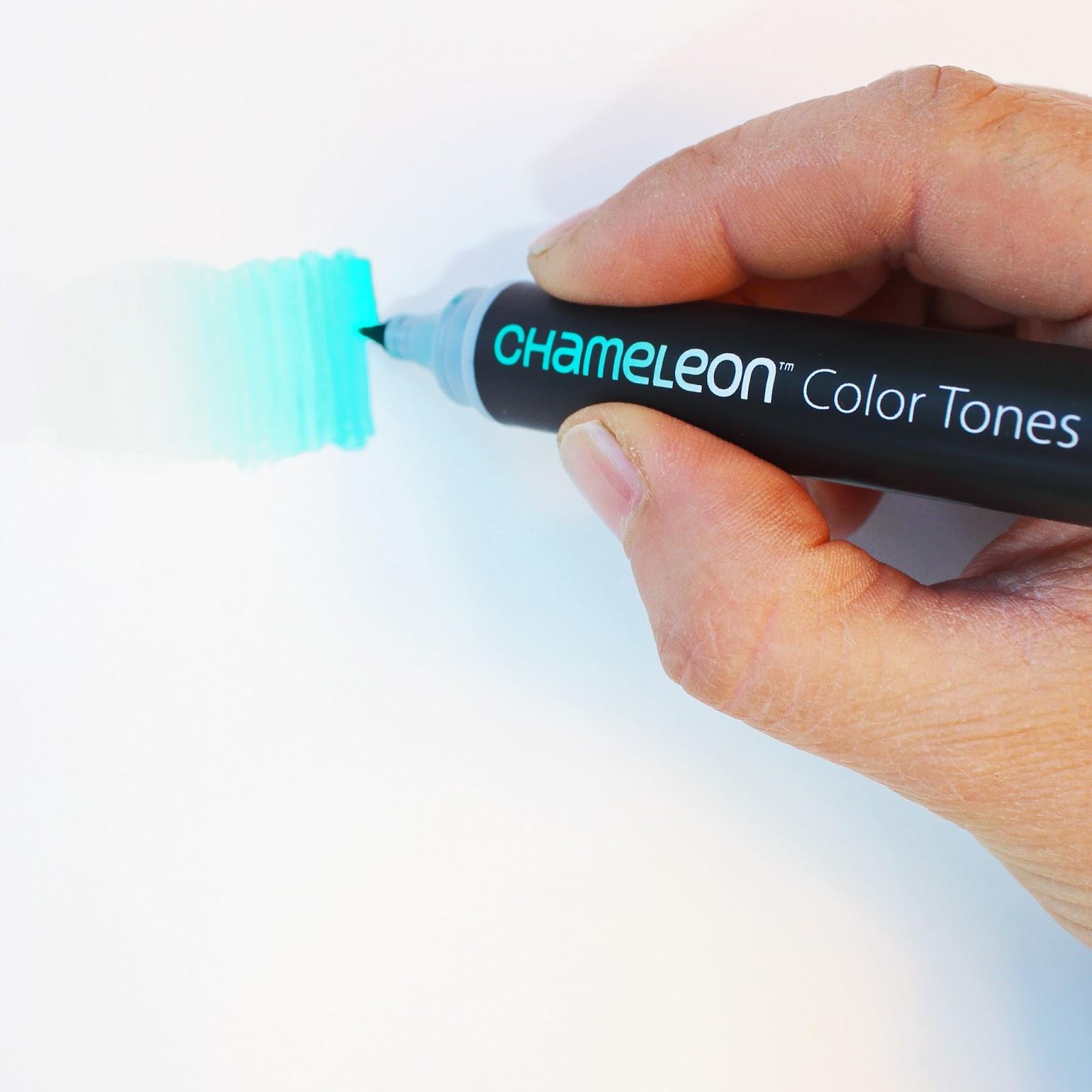תוצאת תמונה עבור Chameleon Color Tones