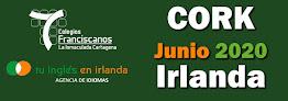 INMERSIÓN EN IRLANDA, JUNIO 2020