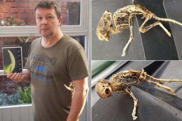 Os restos mortais misteriosos foram descobertos sob um armário de cozinha na casa da família de Rea em Altcar, Lancashire, na Inglaterra