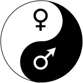 Appliqué au symbole du Yin Yang, le principe du positif/négatif permet une  exploitation sans limite. Voici quelques exemples