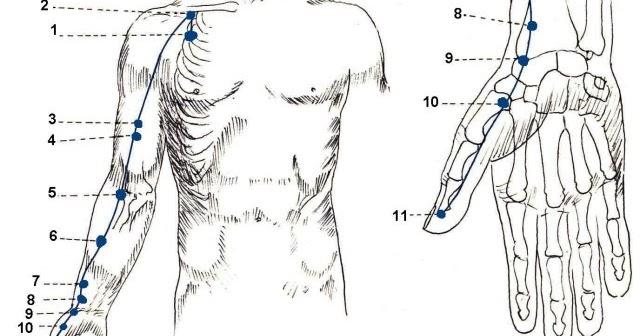Los aparatos láser para el tratamiento de la columna vertebral