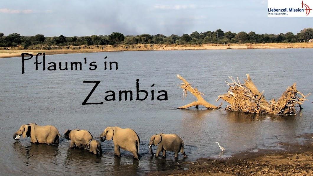 Pflaum's in Zambia
