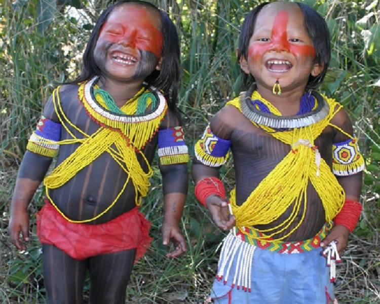 Nativos brasileiros