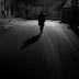 Werckmeister Harmonik/ Karanlık Armoniler