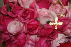 A exuberância das rosas...