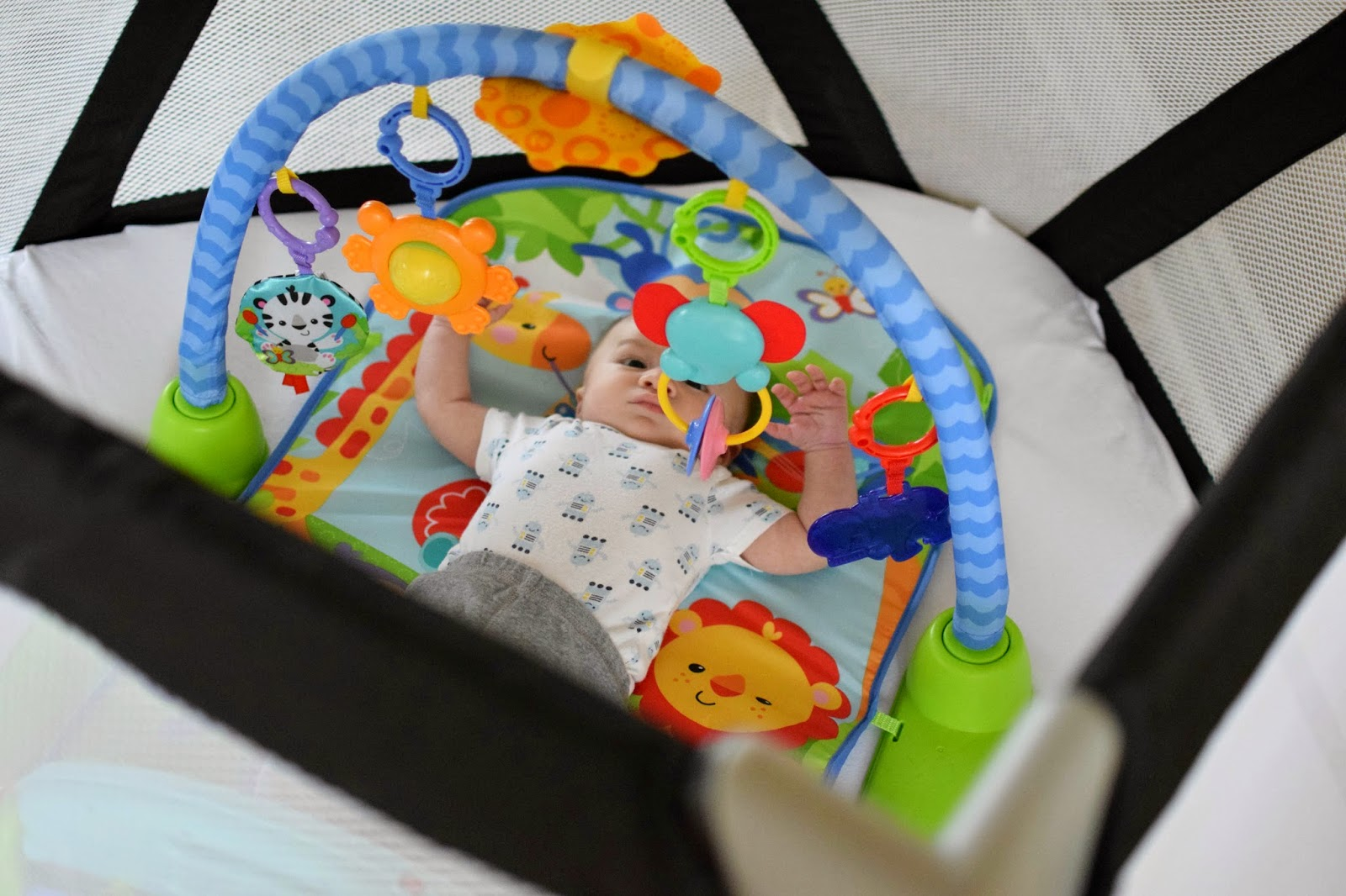 joovy moon room, joovy moon room review, the best big playard