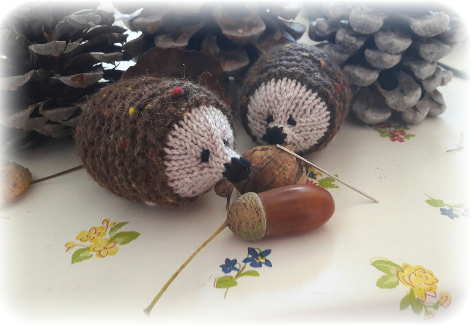 Hedgehog Needledetertor ♥