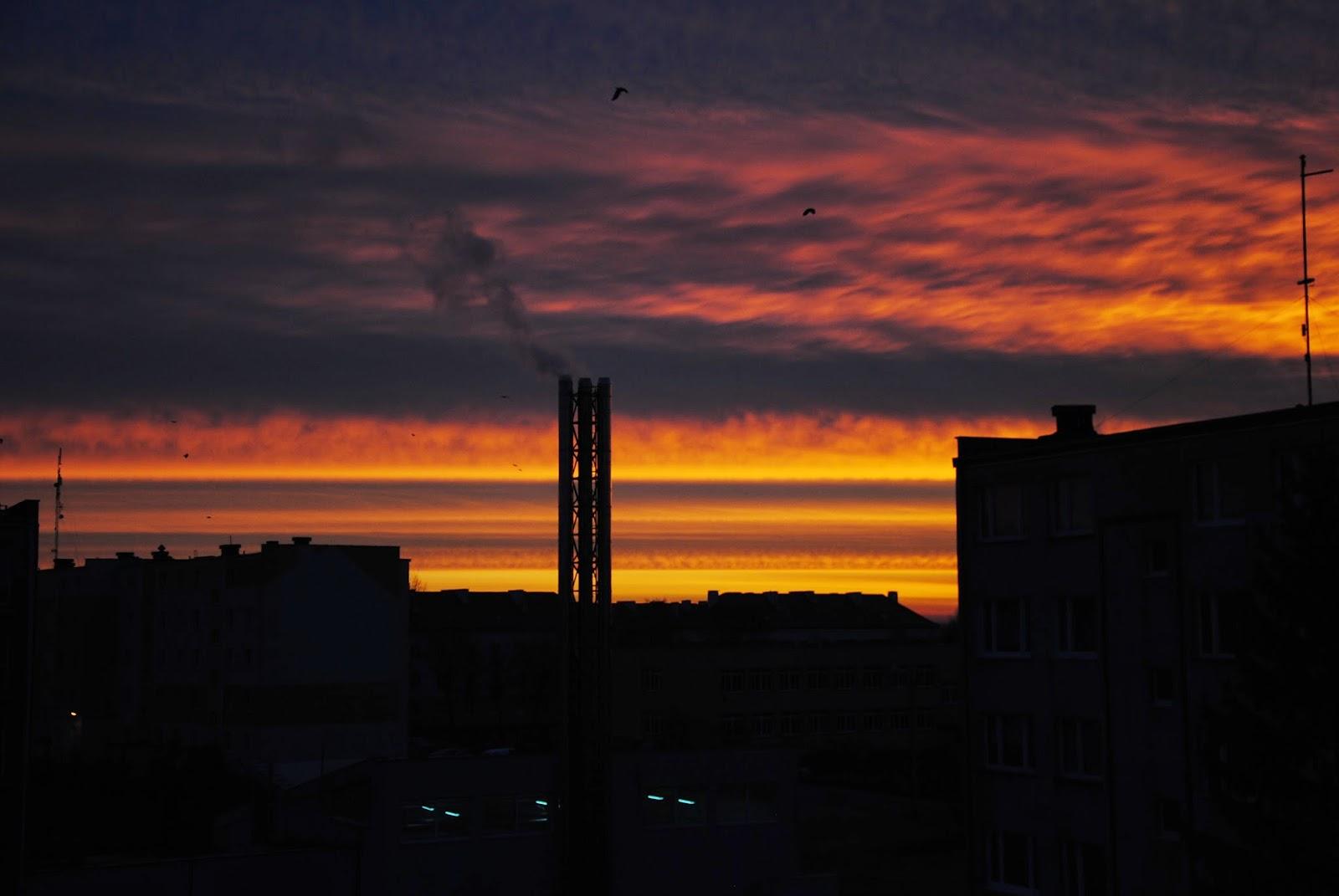 poranek, widok, pomarańczowe niebo,