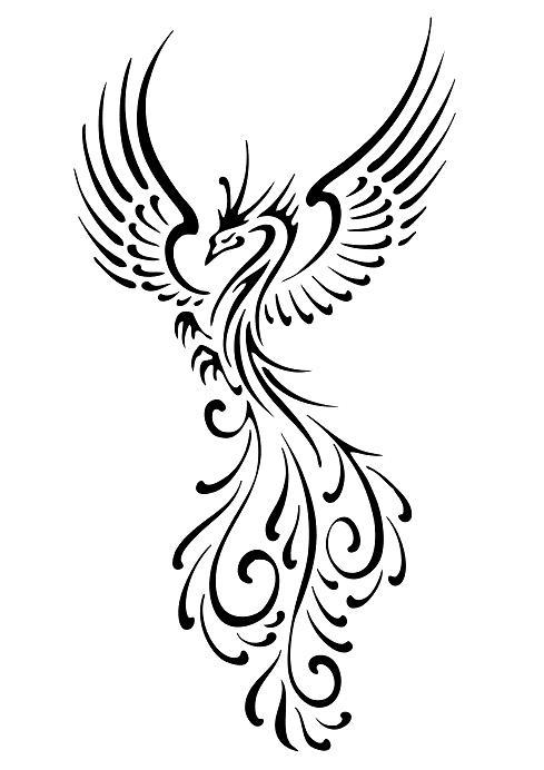 Beautiful phoenix tattoo s design for girl