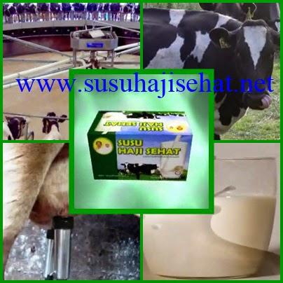 SUSU HAJI SEHAT susu segar asal New Zealand
