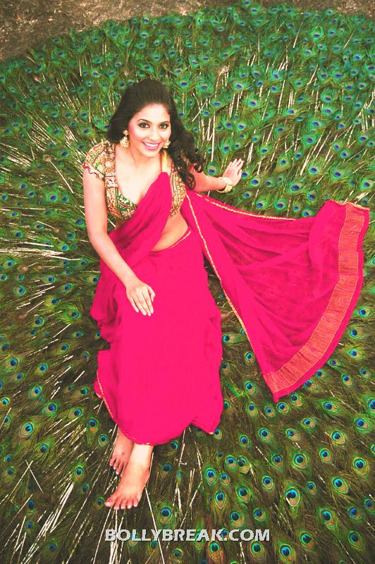 Anjali kalakalappu Wallpaper Sitting on Peacock Feathers in Red Saree - Anjali kalakalappu Wallpaper Sitting on Peacock Feathers in Red Saree