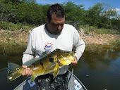 Peixe Lindo