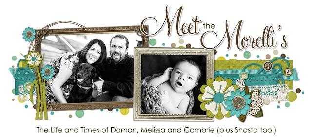 Meet the Morelli's Blog Design