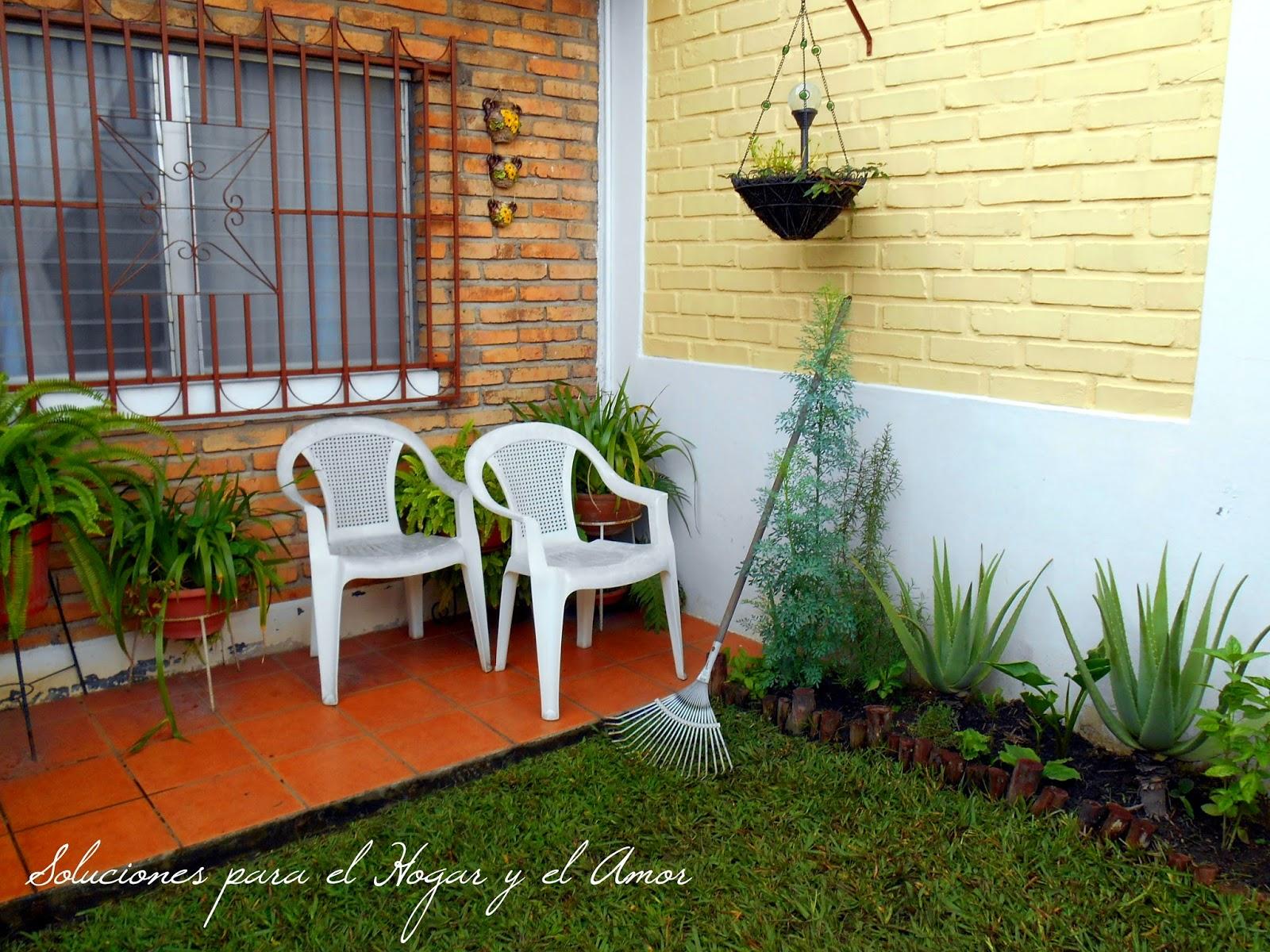 Como cuidar las plantas