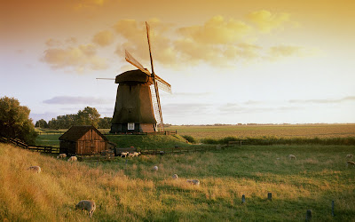 Awesome Windmill in Netherland With- Sunset