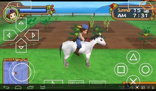Settingan Harvest Moon Hero Of Leaf Valley Pada PPSSPP