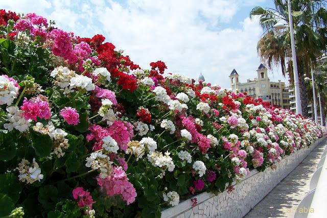 Verde en la tierra y flores en el cielo el tramo 9 del for Nh jardines del turia