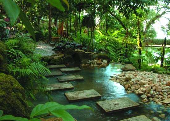 stone steps over jungle stream at penang tropical spice garden