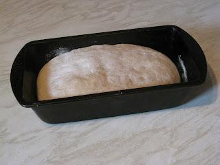 white bread dough rising in tin