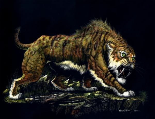 как выглядит саблезубый тигр фото