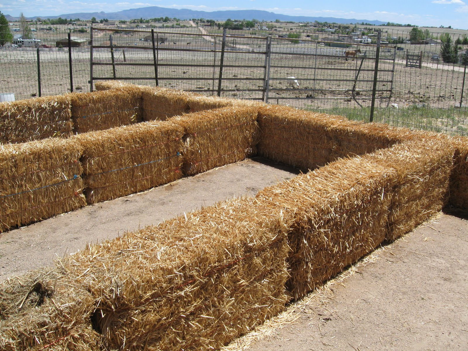 Straw Bale Gardening Archives - HS Blog