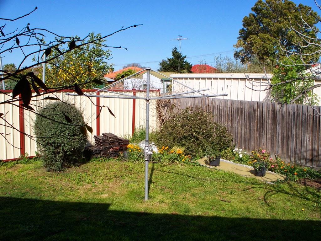 bek u0027s backyard the back yard