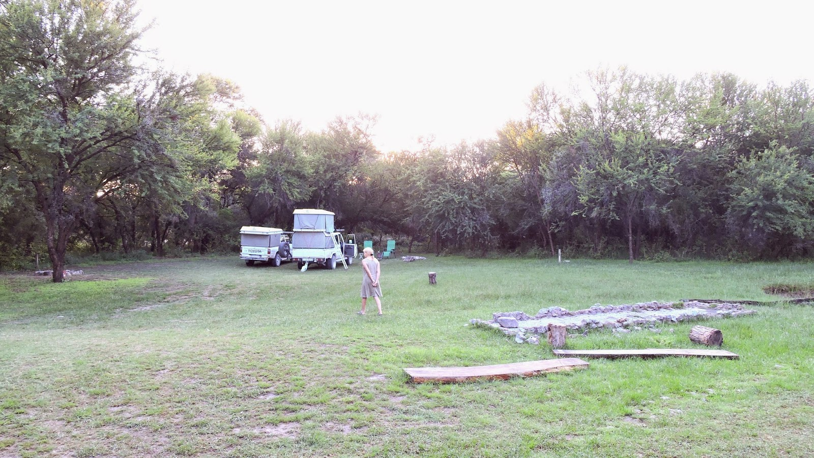 A green, spacious website with large trees at Bush baby Lodge