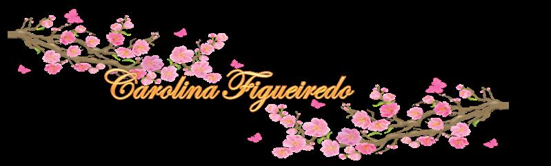Blog Carolina Figueiredo