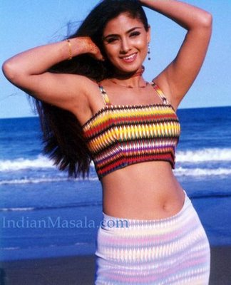 Simran Hot Photos