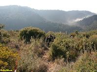 Boniques vistes mentre pugem al Turó del Casuc. Autor: Carlos Albacete