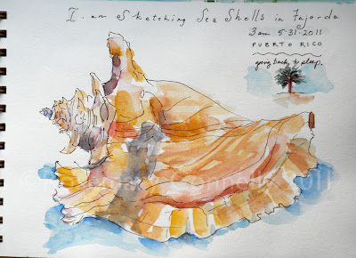 Things To Make With Seashells http://livecheapmakeartusa.blogspot.com/2011/06/my-puerto-rico-watercolor-journal.html