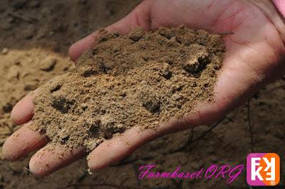 ปลูกพืชให้ได้ผลดีที่สุด ต้องรู้จักดิน ต้องรู้จักโครงสร้างของดิน