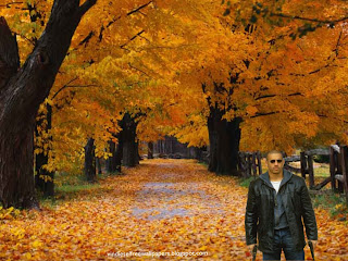 Vin Diesel action movie actor with two guns in Autumn Trees Desktop Wallpaper