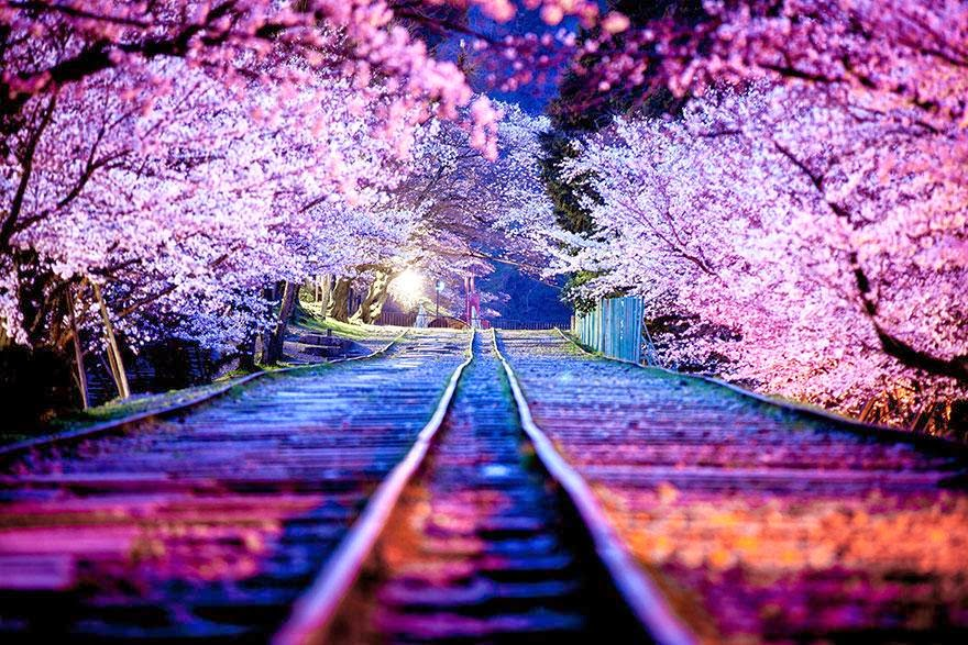 Beautiful Japanese Places