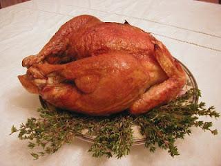 الدجاج الرومي يساعد في علاج حموضة المعدة - حرقة المعدة