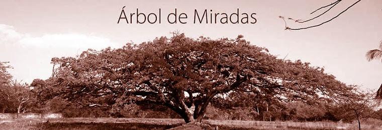 Árbol de Miradas